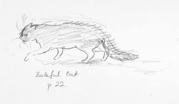 baleful cat sketches