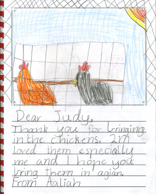 chicken thank you - Aahliah