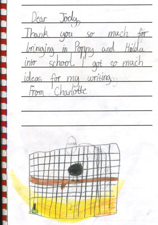chicken thank you - Charlotte