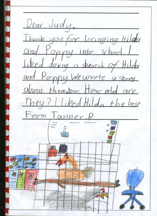 chicken thank you - Tanner