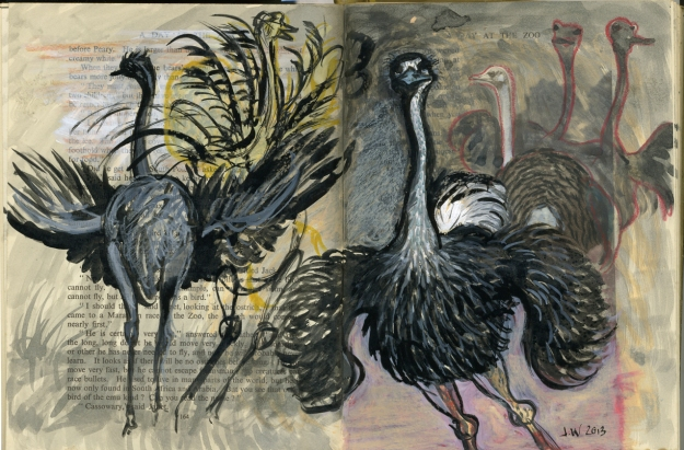 The Mating Dance of the Ostrich - spread