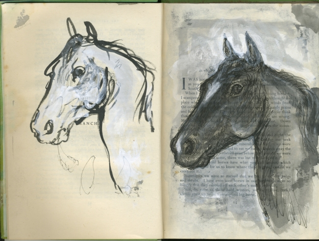 equine soliloquy B&W heads