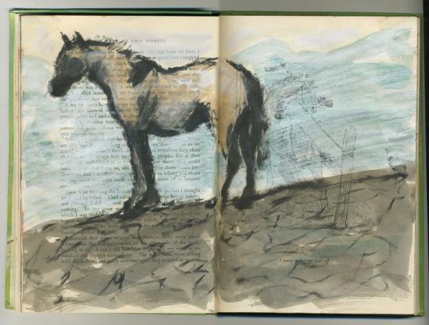 wild horse, captured horse