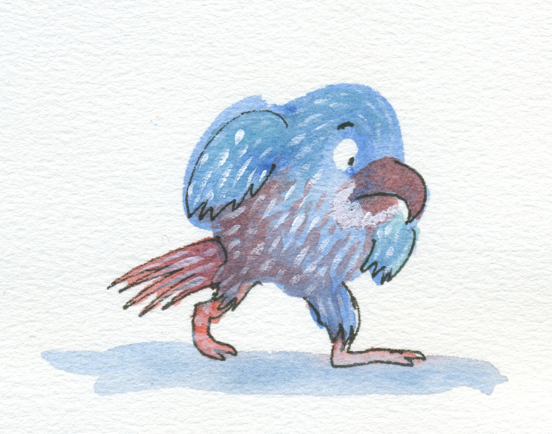 preoccupied parrot