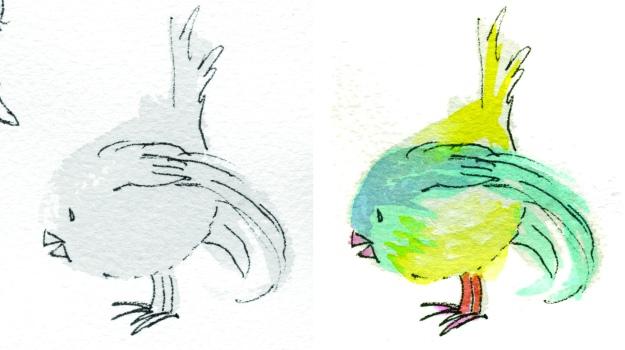 round bird B4after