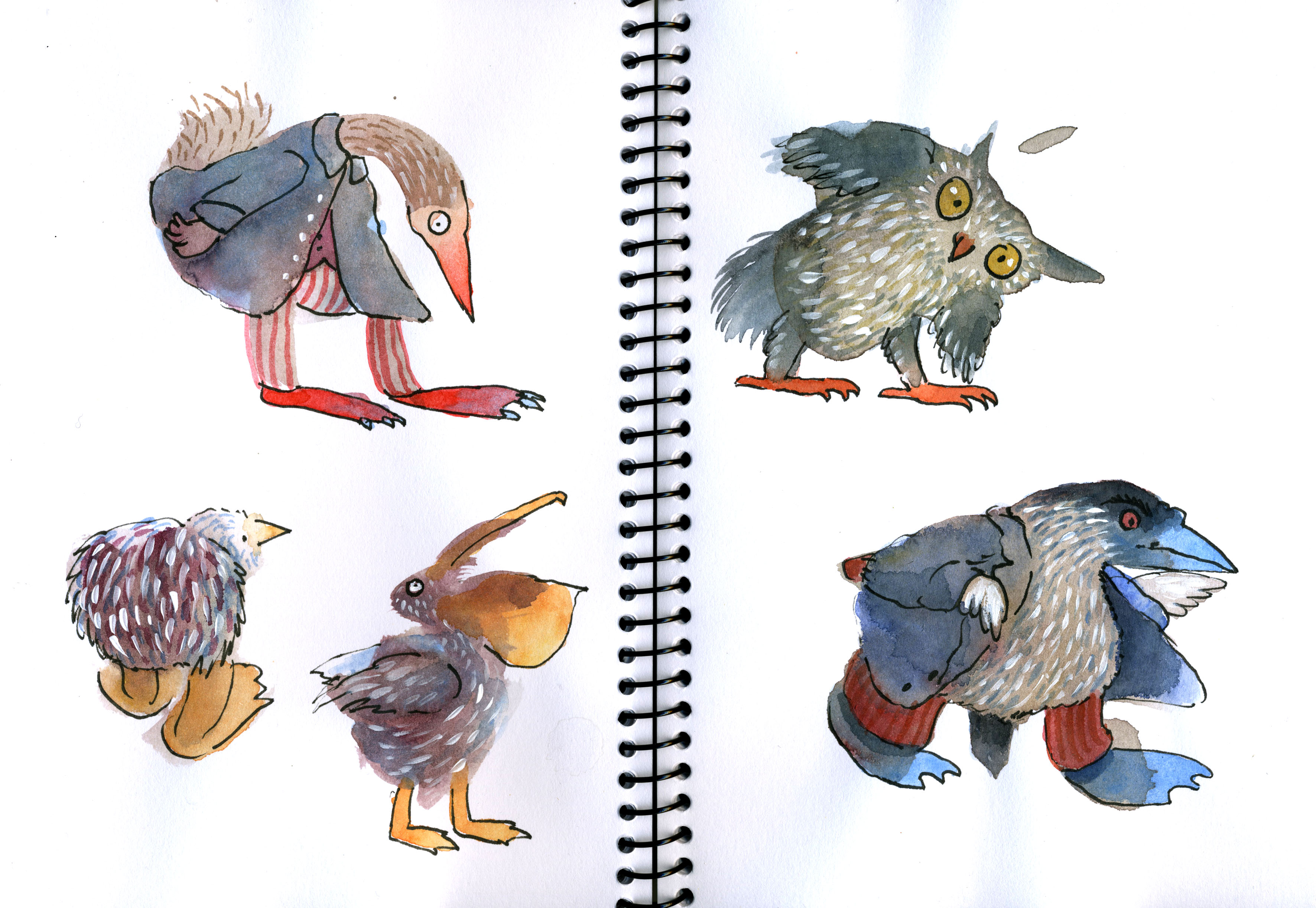 blob birds lores