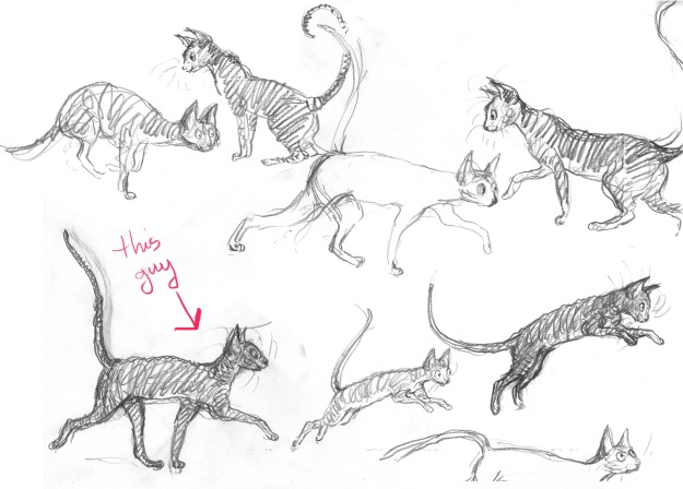cat sketches for veranda spread lores red