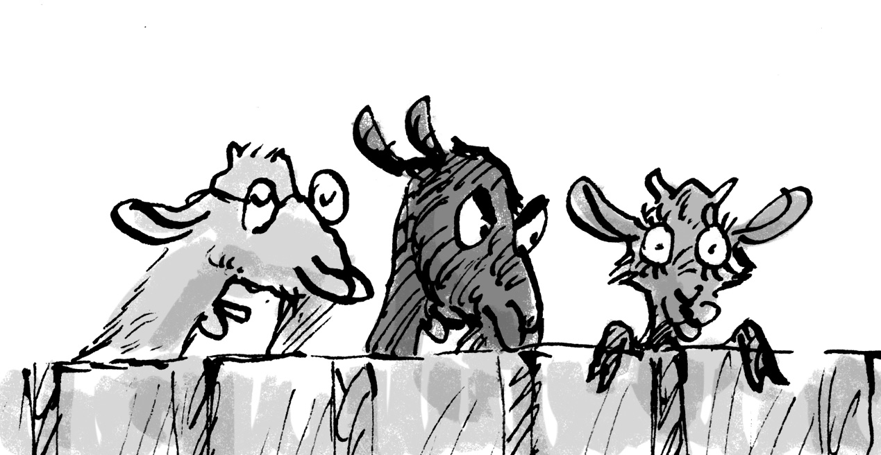 Three goat siblings I drew for 'The Middle Sheep' by Frances Watts