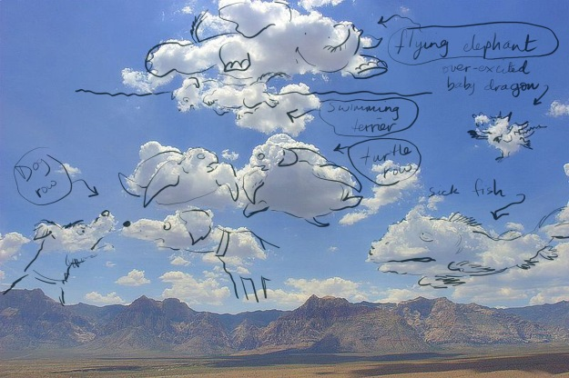 bizarre cloud animals