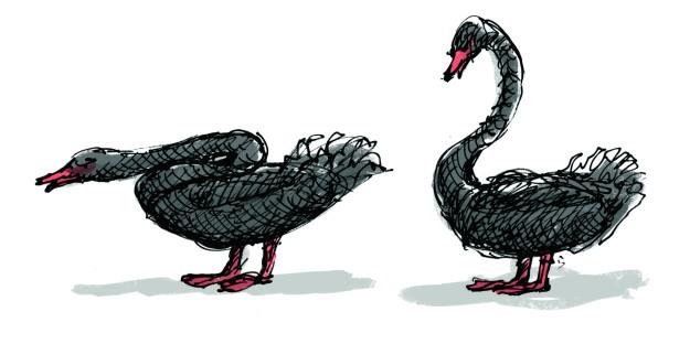 felt tip swan feathers judywatsonart lores