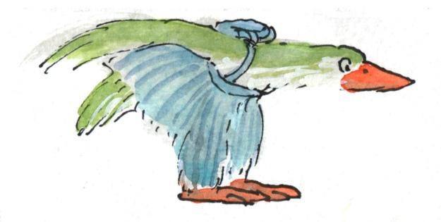 parachute trouserbird judywatsonart lores