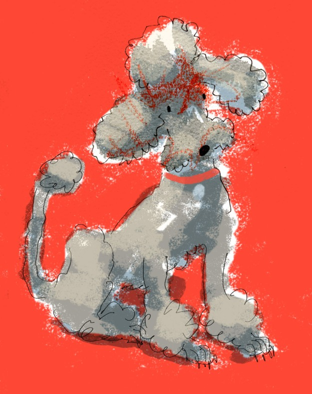 poodle scribble blob judywatsonart lores