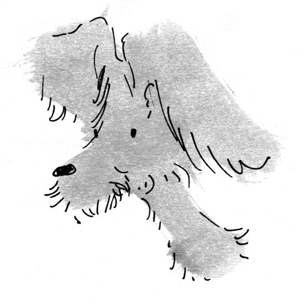 bouffant dog judywatsonart lores