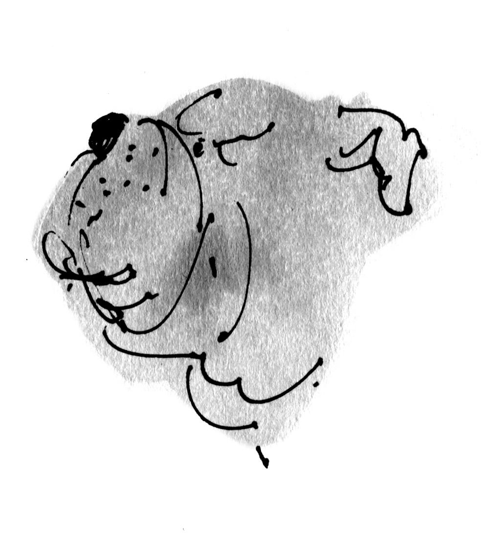 bulldog judywatsonart lores