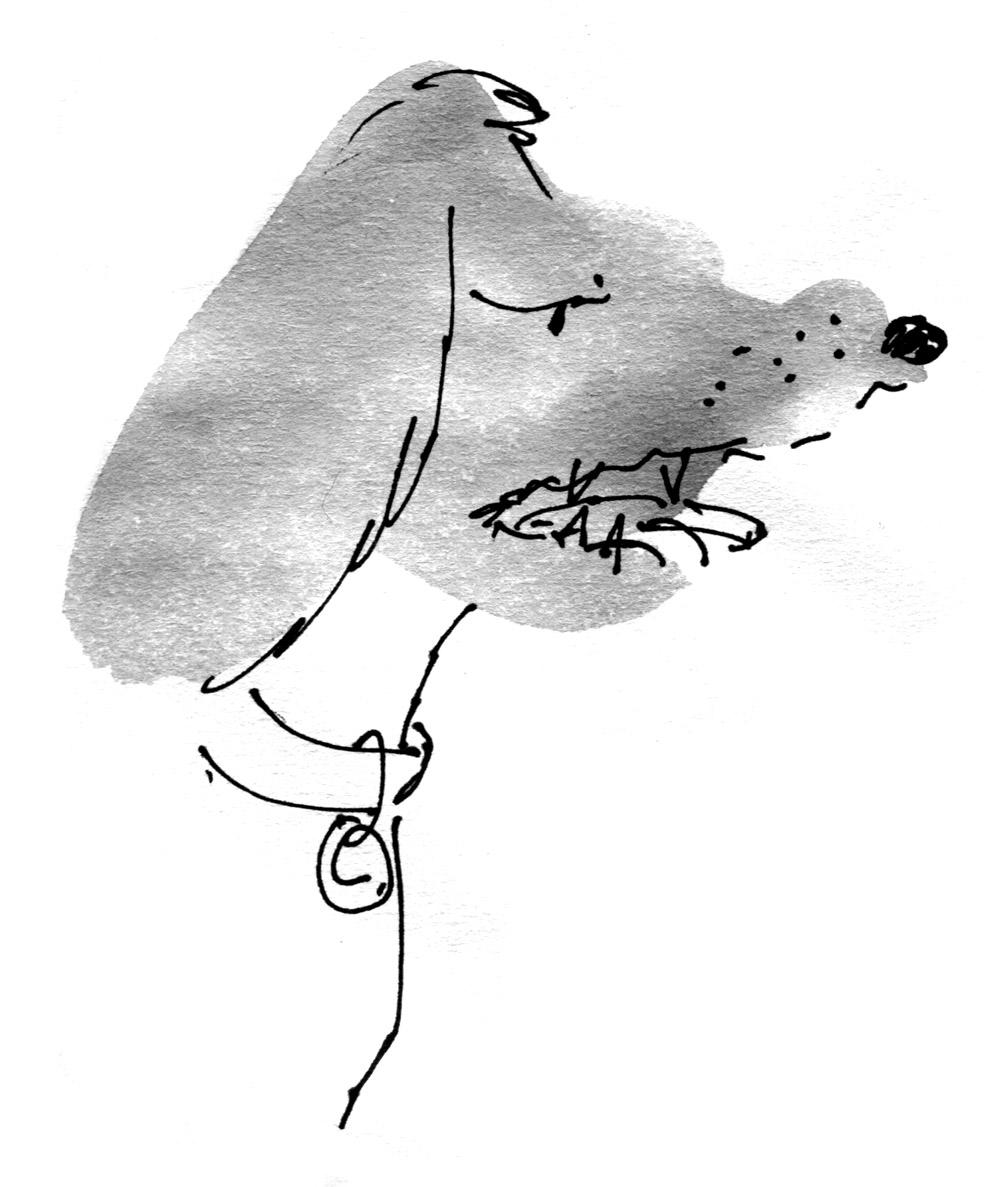 cranky dog judywatsonart lores