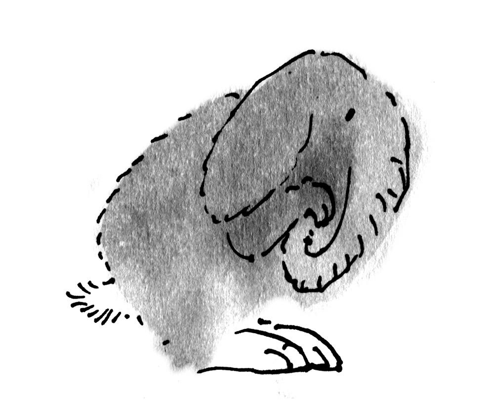 rabbit-elephant judywatsonart lores
