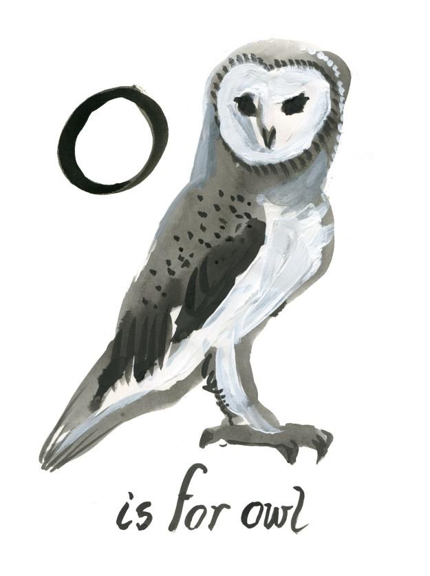 Barn Owl judywatsonart lores