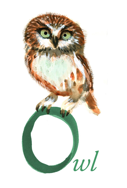 little owl judywatsonart lores
