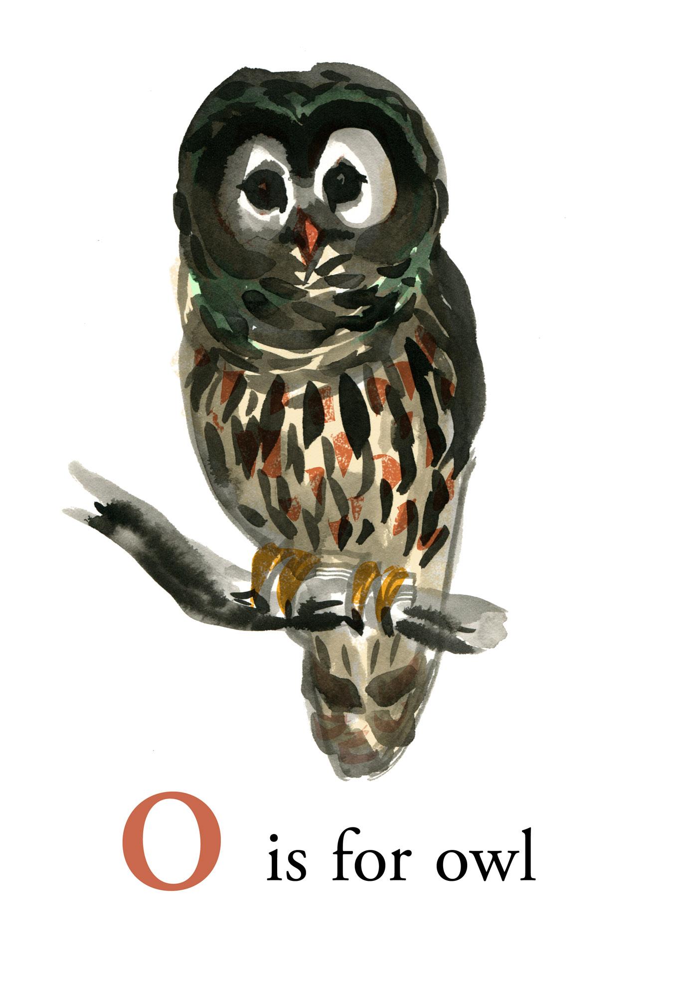 o is for owl judywatsonart lores