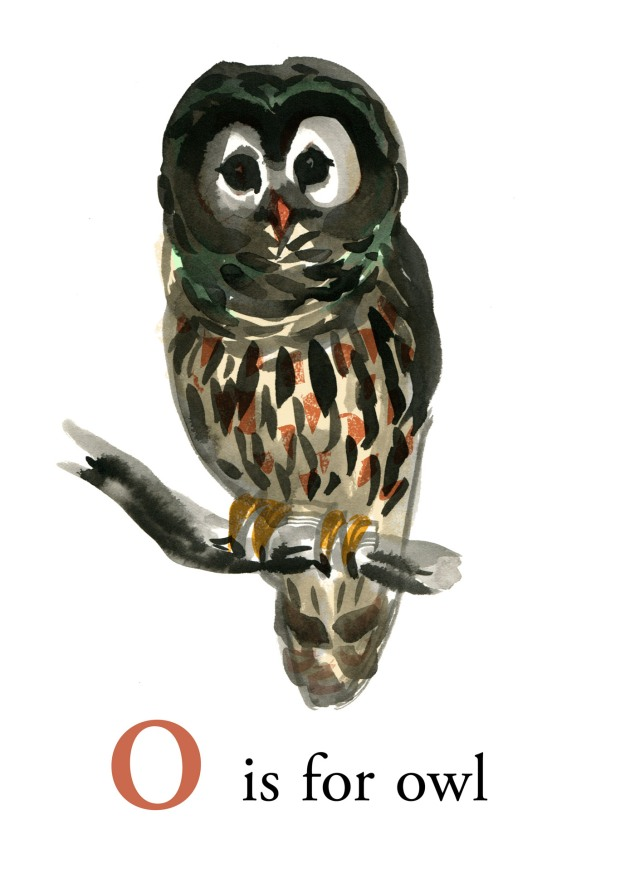 o is for owl judywatsonart lores