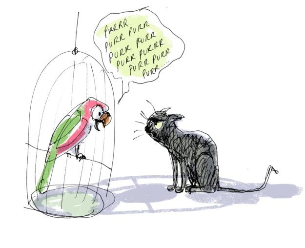 parrot purr judywatsonart lores
