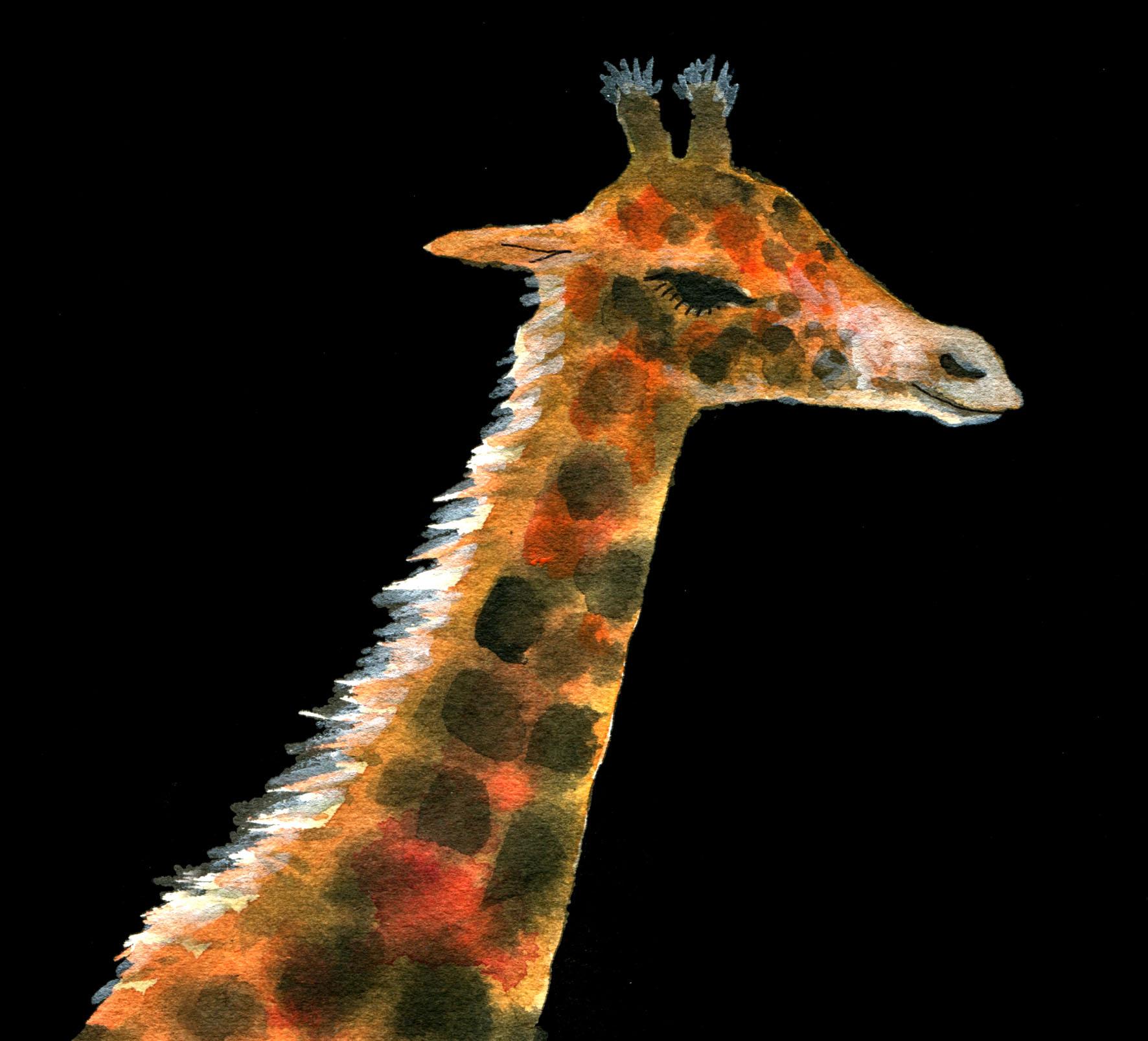 Tomi Giraffe contrasty head judywatsonart lores