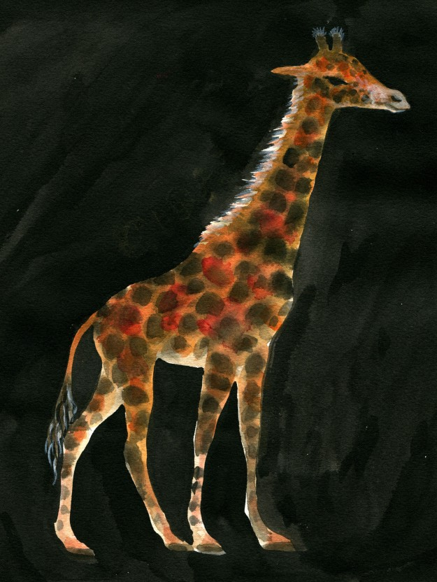 Tomi Giraffe judywatsonart lores