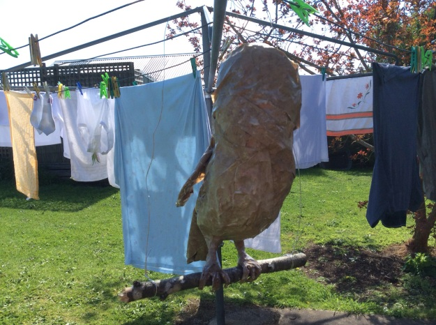 I hope you are enjoying all these photos of the washing. Where would we Australian's be without the marvellous 'Hills Hoist' clothes line?
