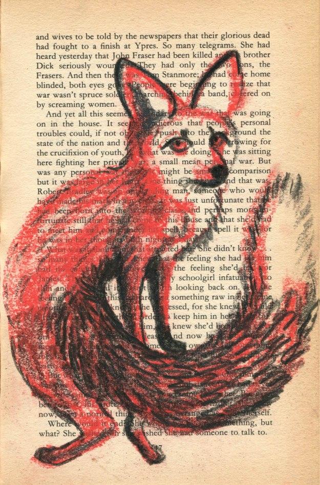 Contortionist fox