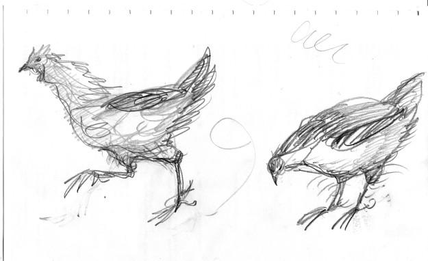 brain doodle chicken