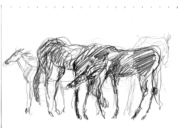 brain doodle horses