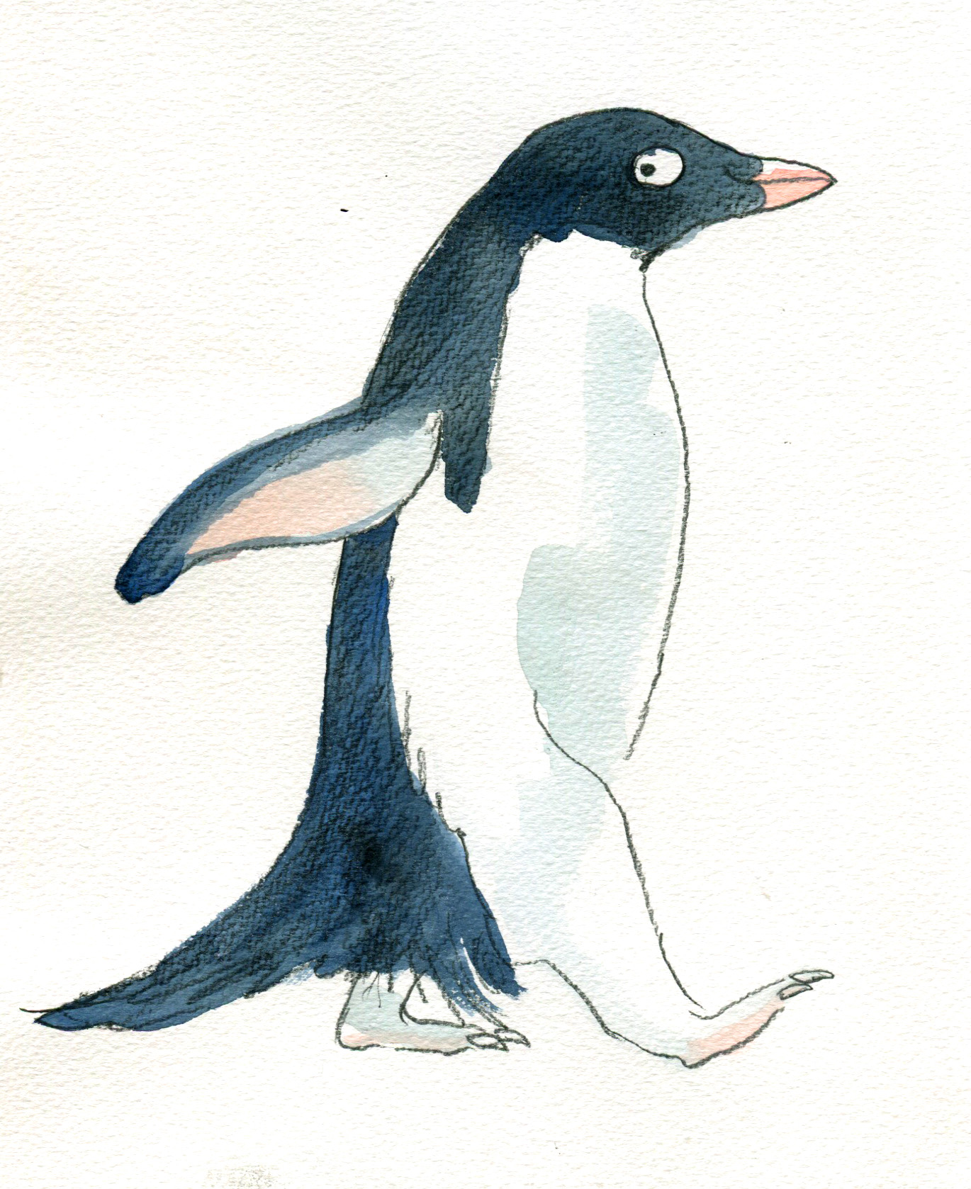 penguin pencil and wash later