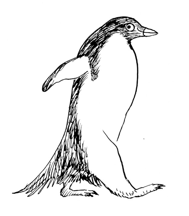 tighter penguin