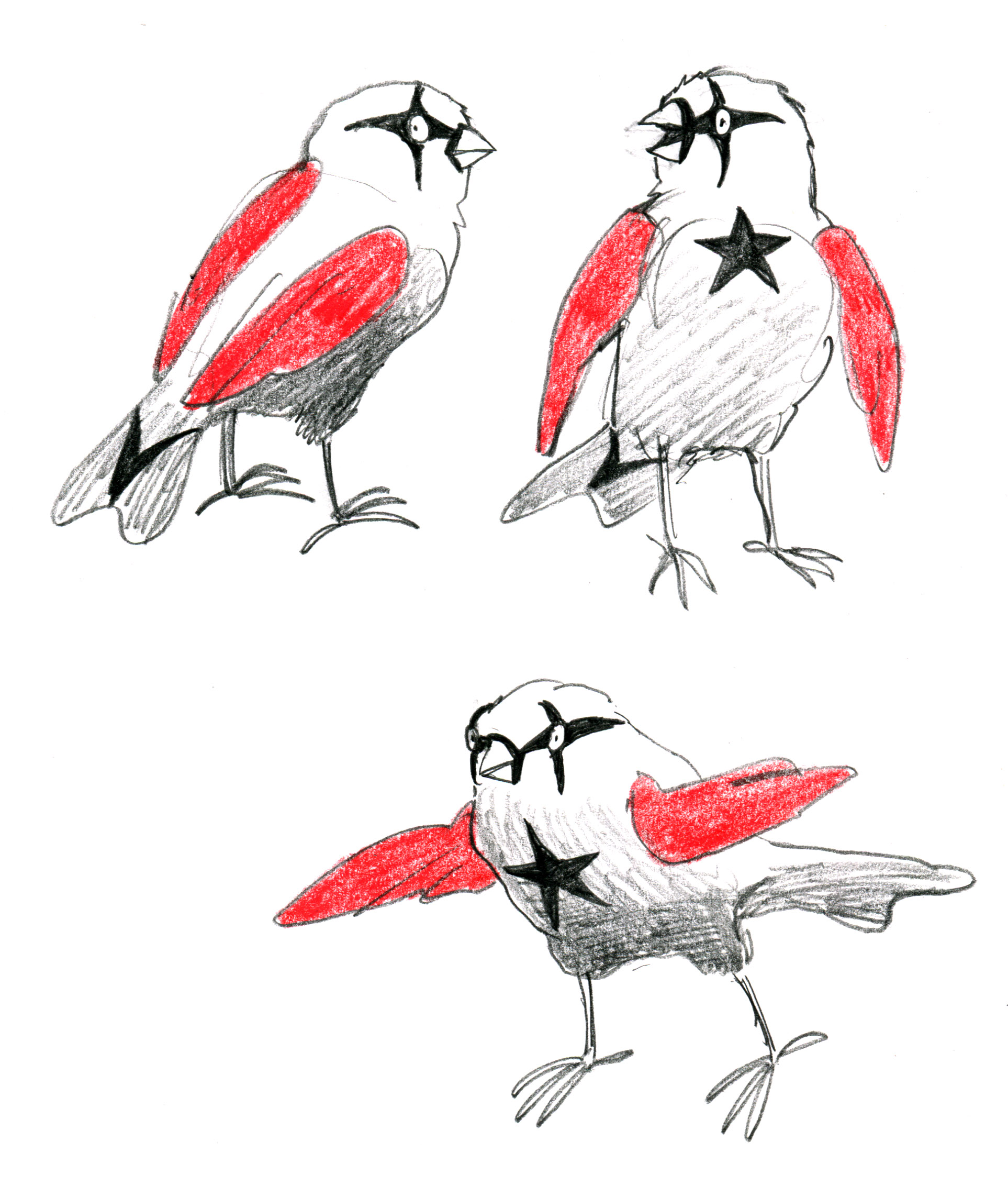 pencil finch superheroes
