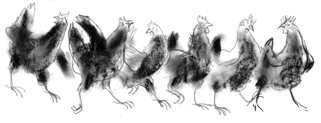 chickens lightened.jpg