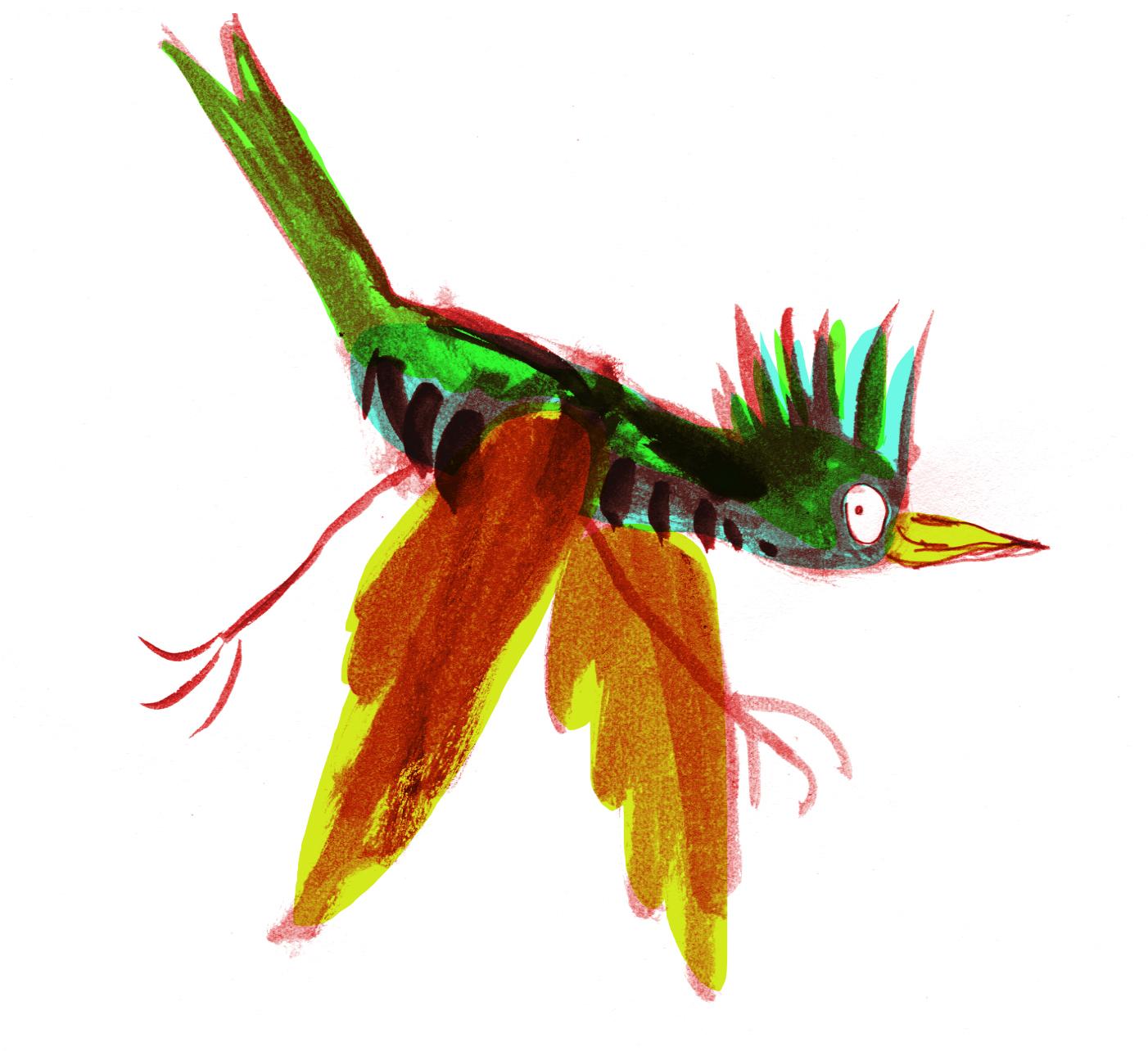woodpecker judywatsonart