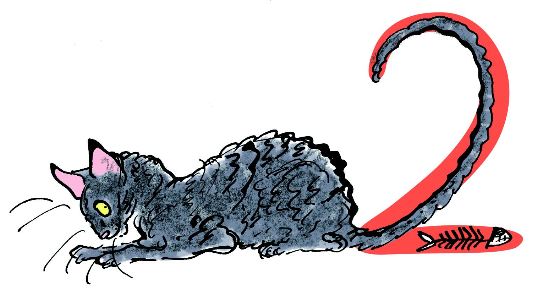 thunder-cat-crouching
