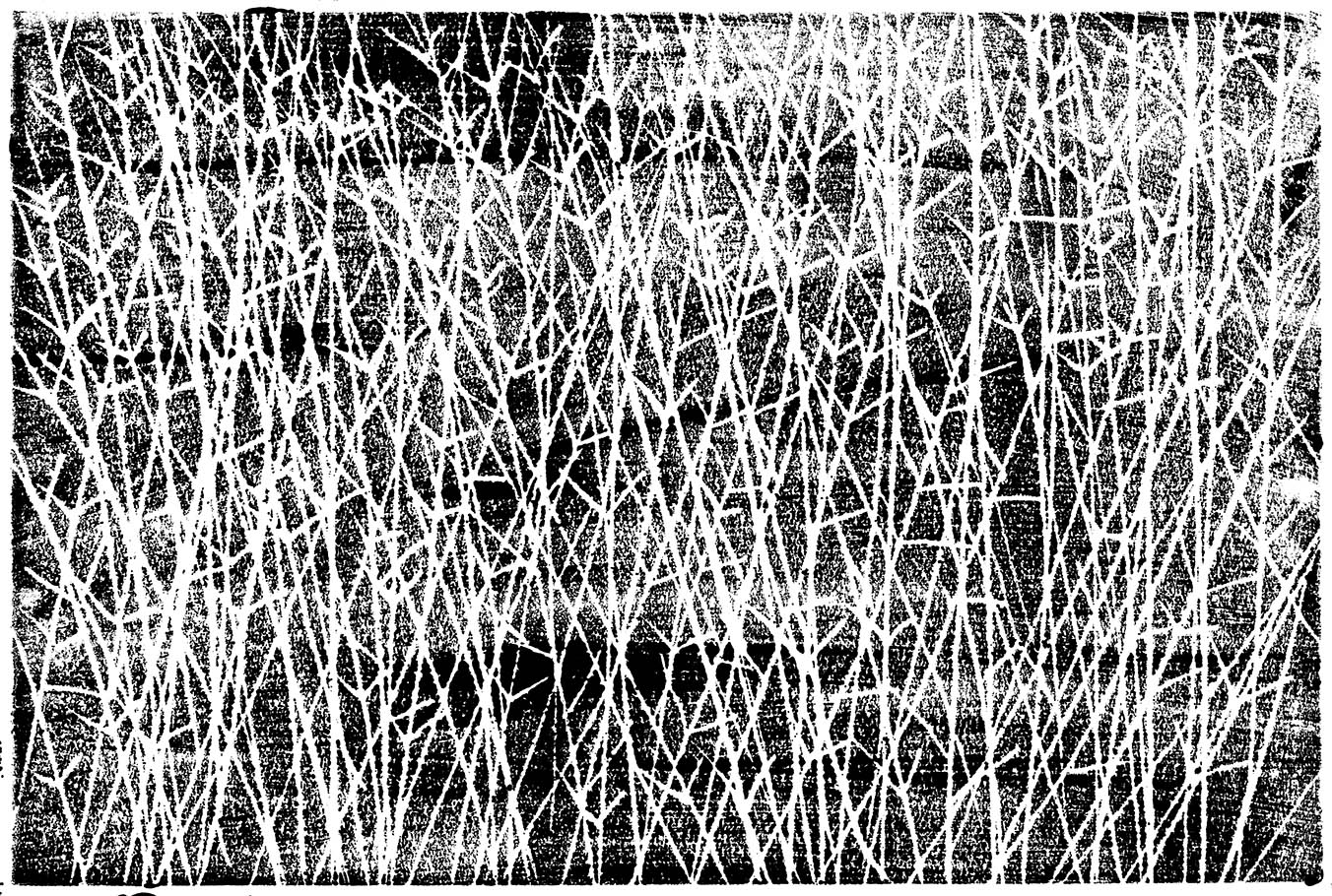 branching grasses print copy