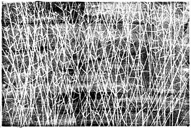 branching grasses print copy